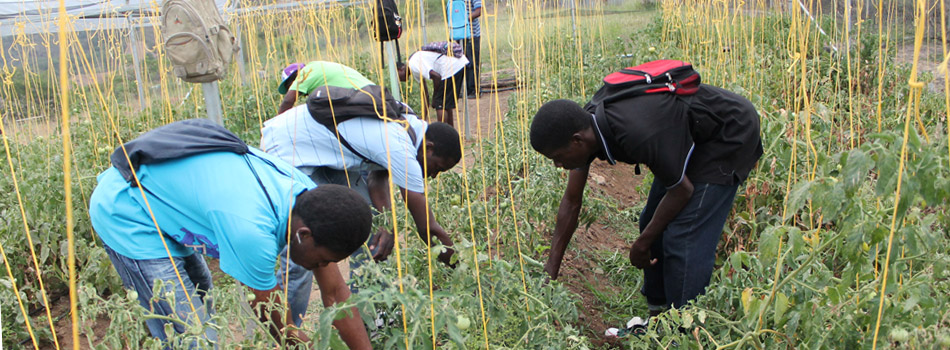 ITSS Agricultural Students